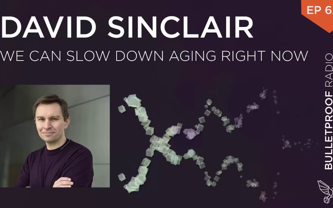 We Can Slow Down Aging Right Now – David Sinclair, Ph.D. – #626