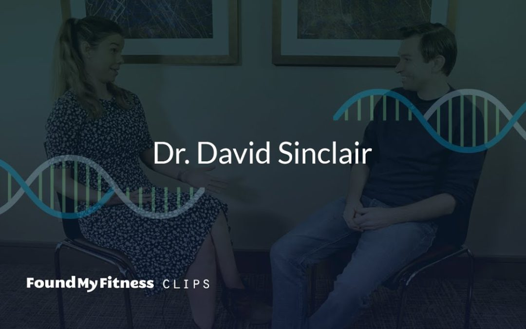 NAD+ boosters: NR, NMN, and how they affect sirtuins | David Sinclair